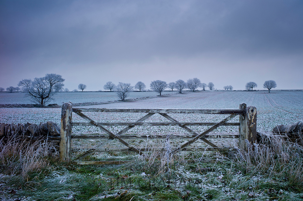Hoar frost on trees and fields in wintry landscape in The Cotswolds, Oxfordshire, UK RESERVED USE - NOT FOR DOWNLOAD -  FOR USE CONTACT TIM GRAHAM