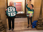 05 MARCH 2020 - ST. PAUL, MINNESOTA: Women cheer for the ERA during a rally in the rotunda at the Minnesota State Capitol. About 75 people, mostly women, came to the capitol to support ratification of the Equal Rights Amendment and mark the local observance of International Women's Day. International Women's Day is celebrated on March 8 around the world.     PHOTO BY JACK KURTZ