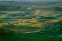 The rolling hills of the fields of the Palouse region in Southeastern Washington are a sight to see.  Endless lines, colors and shapes are everywhere.