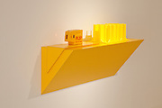 "Haim Steinbach Installation ""Display #67 - Forsythia - PLS5/2SB"" at Louis Vuitton Maison, 2010"