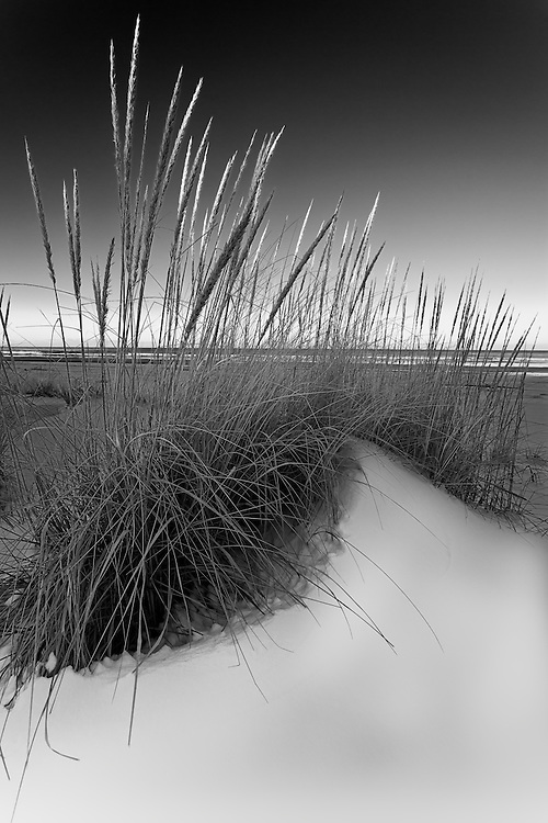Wintercoast - a project on the Oregon Washington coast in winter , when the crowds have left and nature is at its most raw.
