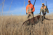 Pheasant Hunters in South Dakota