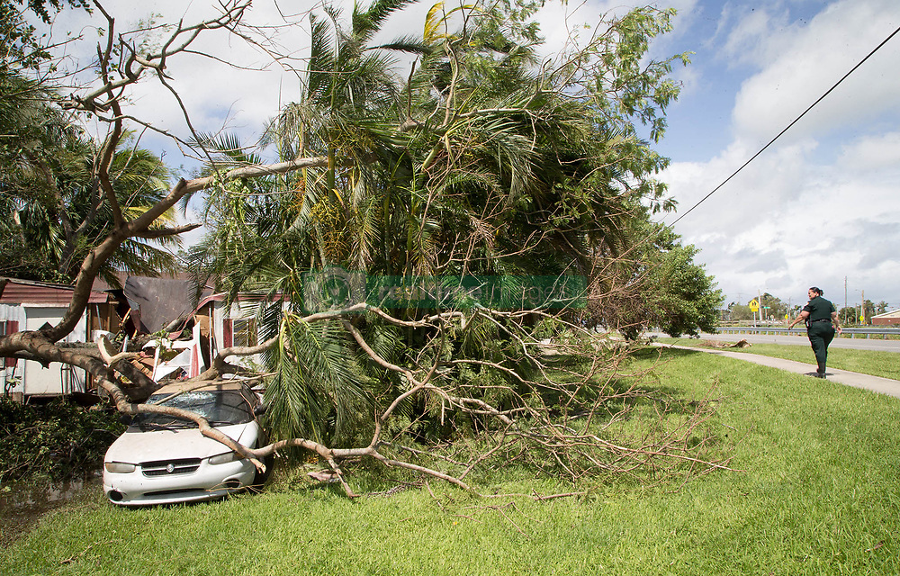 September 11, 2017 - Belle Glade, Florida, U.S. - Palm Beach County Sheriff Deputy J. Read makes a welfare check on a mobile home and car crushed by a tree on NW 6th Street in Belle Glade, Florida on September 11, 2017. Deputy Read did not find anyone occupying the home that was damaged by hurricane Irma. (Credit Image: © Allen Eyestone/The Palm Beach Post via ZUMA Wire)