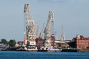 Hamburger Hafen, Verladekraene, Hamburg, Deutschland.|.Hamburg harbour, cranes, Hamburg, Germany.