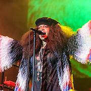 Erykah Badu performs at the 2016 Summer Spirit Festival at Merriweather Post Pavilion.