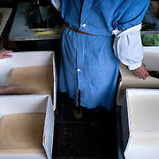 St-Hubert - July 17, 2007 - The Communion wafer, part of the sacrament of the Eucharist. Benedictine nuns from the Monastery of Notre-Dame d'Hurtebise make communion wafers for distribution in the Belgian country. Generally communion wafers are made with flour and water, without leavening or additives. To be appropriate for use in communion, the product must be soluble in the mouth and not brittle or cracker-like. The product should also have a long shelf life. Traditionally, communion wafers are formed from bread sheets that are created by cooking batter between metal plates in close adjustment. The wafer thickness varies from about 0.030 to 0.072 inches.©Jean-Michel Clajot