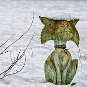 This is a bit of whimsey.  I was out shooting when I noticed this contented little cat sitting in the snow.  I love the snow cap on his head as well as the details in his face, to say nothing of that inscrutable expression.