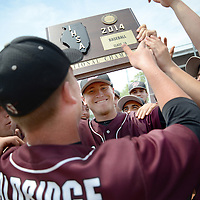 Laura Stoecker/lstoecker@dailyherald.com<br /> Prairie Ridge's Timothy Jablonsky (facing) and Caleb Aldridge (back to camera) hoist up their Class 4A McHenry sectional championship plaque after defeating Jacobs at Peterson Park in McHenry on Saturday, June 7.