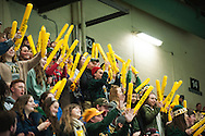 Fans cheer for Vermont during the women's hockey game between the New Hampshire Wildcats and the Vermont Catamounts at Gutterson Field House on Friday night February 3, 2017 in Burlington. (BRIAN JENKINS/for the FREE PRESS)