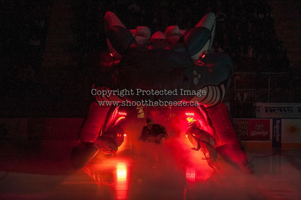 KELOWNA, CANADA - NOVEMBER 20: Jordon Cooke #30 of the Kelowna Rockets enters the ice against the Victoria Royals on November 20, 2013 at Prospera Place in Kelowna, British Columbia, Canada.   (Photo by Marissa Baecker/Shoot the Breeze)  ***  Local Caption  ***