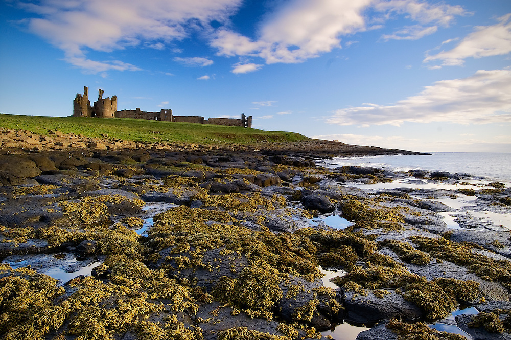 The dormant remains of the castle still stand on the Northumberland coastline.