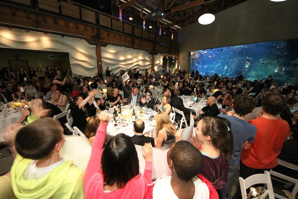 Broadway Bound 2012 Gala at Seattle Aquarium.