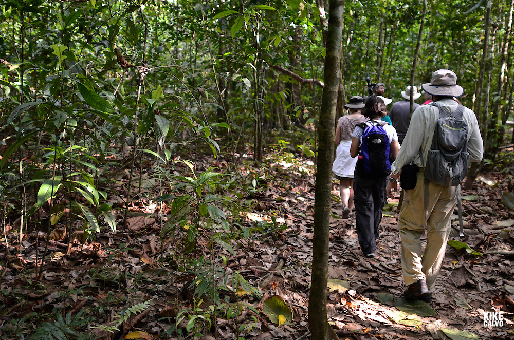 Corcovado National Park   Travelers exploring Pargo Trail at Corcovado National Park.   The park conserves the largest primary forest on the American Pacific coastline and one of the few remaining sizable areas of lowland tropical rainforests in the world.