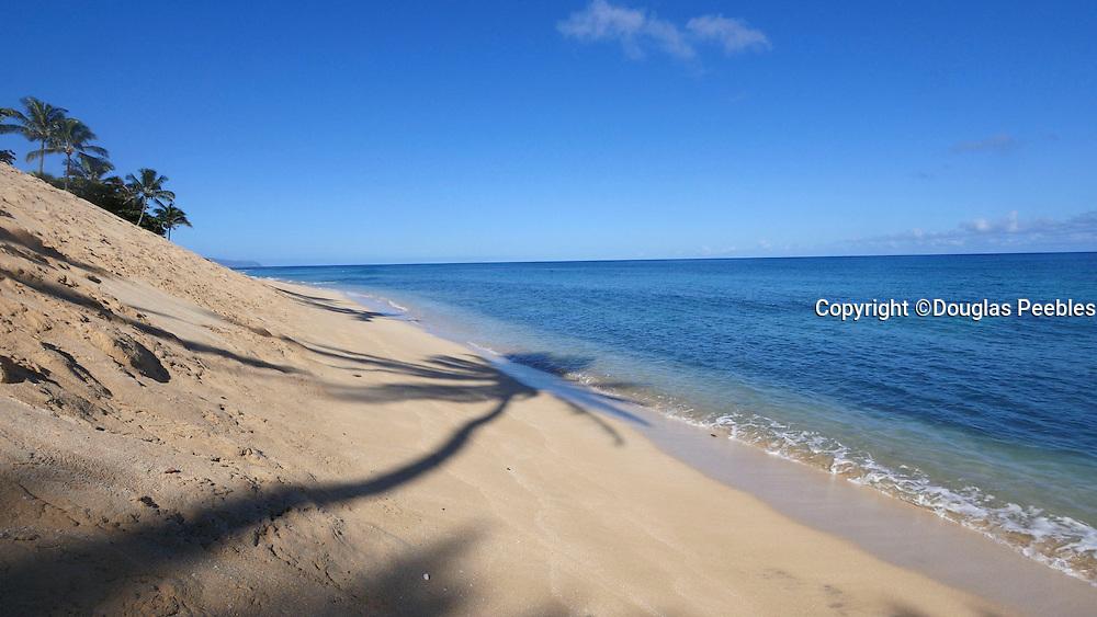 Coconut palm shadow, Sunset Beach, North Shore, Oahu, Hawaii