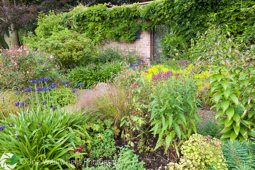 The Walled Garden at Gogshall Grange, Cheshire. Designed by Tom Stuart-Smith, it is photographed in July