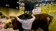 Omaha, Neb 5/6/06 Warren Buffet climbs a bull at the Justin Boots booth on the floor at the Berkshire Hathaway annual meeting in the Qwest Center Omaha Saturday Morning..(Chris Machian/For Bloomberg)