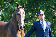 Juan Antonia Real Garcia, (ESP), Bamaro, Corne, Polo, Vitales, Wanted - Horse Inspection Driving - Alltech FEI World Equestrian Games&trade; 2014 - Normandy, France.<br /> &copy; Hippo Foto Team - Leanjo de Koster<br /> 25/06/14
