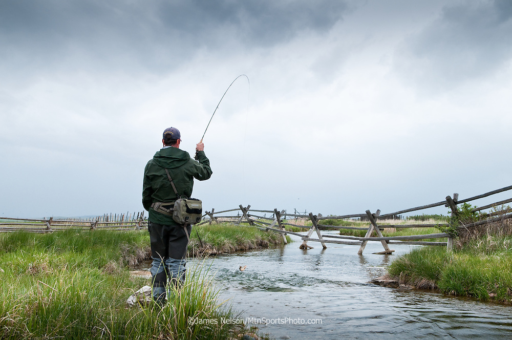 A fly fisherman hooks a trout while fishing the McCoy Spring Creeks in southwest Monatana.