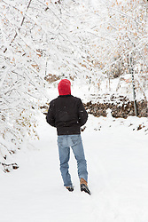 back of a man in snow looking at trees