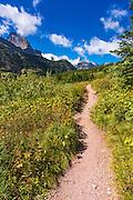 Iceberg Lake trail, Many Glacier, Glacier National Park, Montana