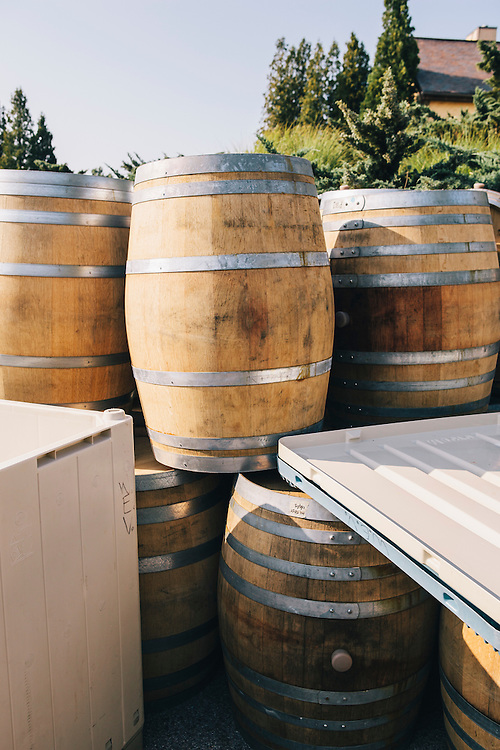 The Wolffer Estate winery, Sagaponack, East Hampton, NY
