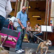USA. New York -Soho in front of cafe restaurant Felix, dogs and owners   - United States  / Soho Cafe restaurant chez Felix, la mode des chiens  - Etats unis