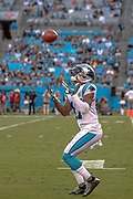 Carolina Panthers wide receiver Terry Godwin (17) catches the ball on a punt return against Pittsburgh Steelers during a NFL football game, Thursday, Aug. 29, 2019, in Charlotte, N.C. The Panthers defeated the Steelers 25-19.  (Brian Villanueva/Image of Sport)