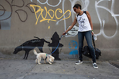 OCT 03 2013 Banksy graffiti New York
