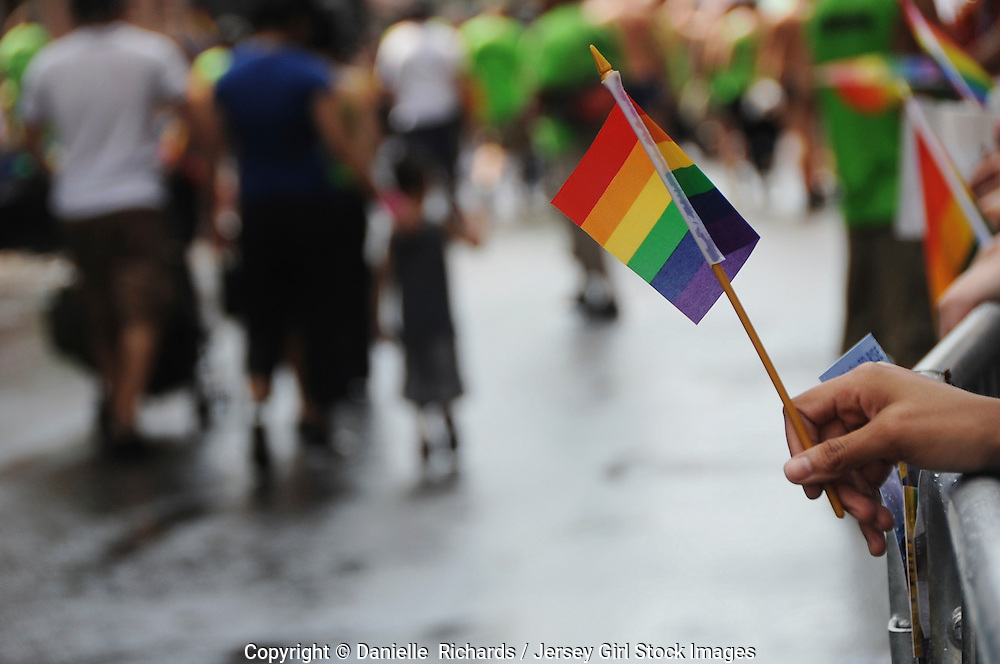 Supporters waving rainbow flags during the 2008 Pride Parade in New York.