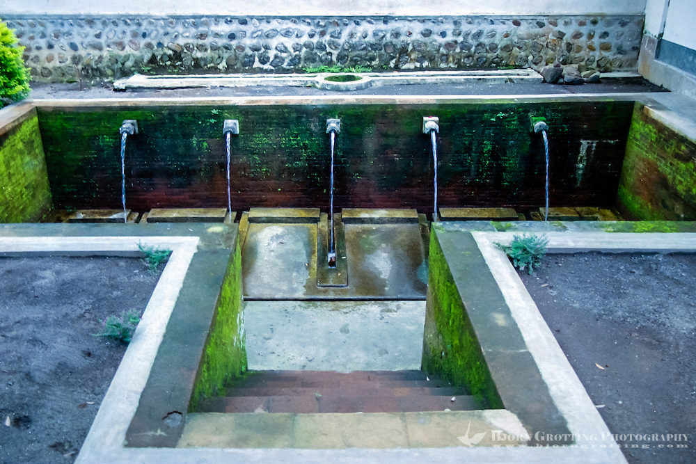 Nusa Tenggara, Lombok, Mataram. Pura Lingsar temple, The sacred pool, the holy eels in the water can be enticed from their hidings with boiled eggs.