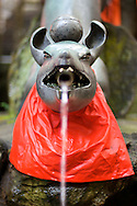 A fountain shaped like a fox at the Shinto shrine at Fushimi Mountain, in Kyoto, Japan.