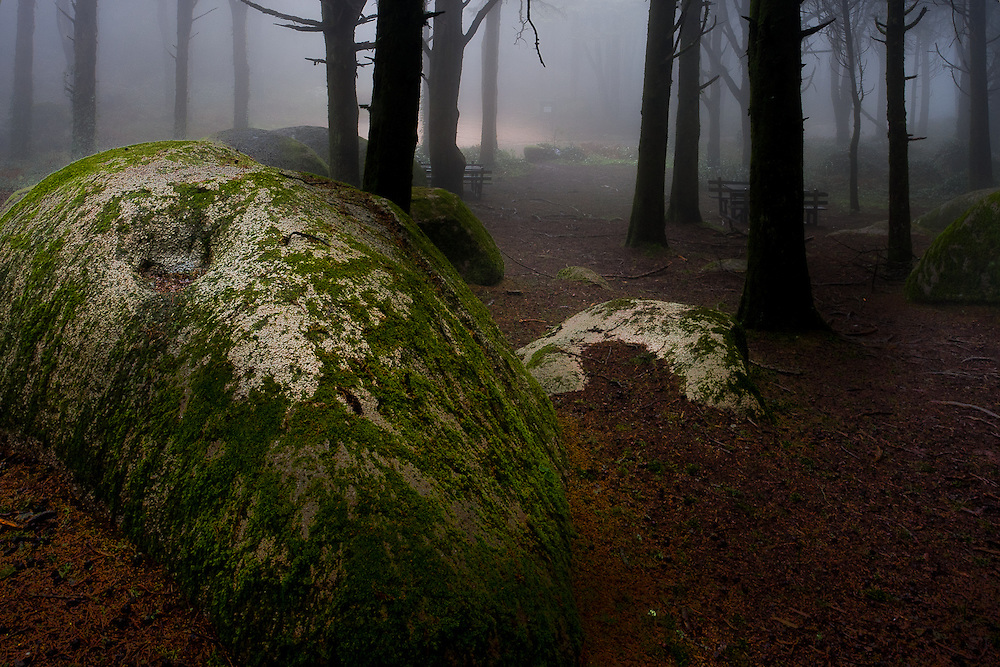 The picnic park at Peninha gains an eerie atmosphere as the enormous moss covered granite boulders and trees are eveloped in fog