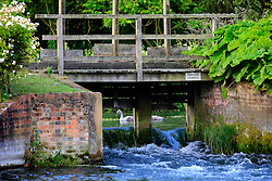 UK ENGLAND WILTSHIRE 26JUN08 - Sluice at the river Kennet near Stichcoombe in rural Wiltshire, western England...jre/Photo by Jiri Rezac..© Jiri Rezac 2008..Contact: +44 (0) 7050 110 417.Mobile:  +44 (0) 7801 337 683.Office:  +44 (0) 20 8968 9635..Email:   jiri@jirirezac.com.Web:     www.jirirezac.com..© All images Jiri Rezac 2008 - All rights reserved.