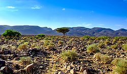 Looking towards the Iriki National Park, near Tazzarine, Morocco<br /> <br /> (c) Andrew Wilson | Edinburgh Elite media