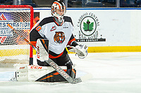 KELOWNA, BC - NOVEMBER 8:  Mads Søgaard #30 of the Medicine Hat Tigers warms up in net against the Kelowna Rockets at Prospera Place on November 8, 2019 in Kelowna, Canada. (Photo by Marissa Baecker/Shoot the Breeze)