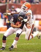 Browns defensive lineman Alvin Mcckinley snags Bears quarterback Kyle Orton during the first half of Sunday's 20-10 win over Chicago.