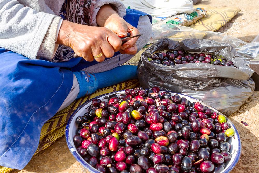 Al Amal Cooperative in Azrou, Middle Atlas region of Morocco