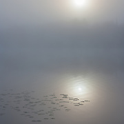 Foggy sunrise on a lake in autumn.