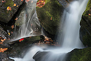 Tremont Fall