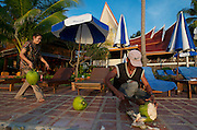 Panviman Resort Ko Chang. Gardener plucking coconuts.