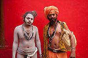 Naga Babas of the Juna Akhara, Haridwar, India
