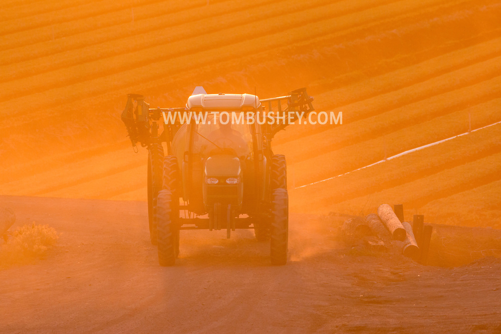 A tractor drives back to the barn at sunset after working in Black Dirt fields in Goshen, New York. The spring has been very dry so far in Orange County.