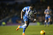 Brighton winger, Elvis Manu (19) during the Sky Bet Championship match between Brighton and Hove Albion and Wolverhampton Wanderers at the American Express Community Stadium, Brighton and Hove, England on 1 January 2016.