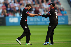 Dirk Nannes of Somerset (L) celebrates with Marcus Trescothick of Somerset after taking the wicket of James Fuller of Gloucestershire - Photo mandatory by-line: Dan Mullan/JMP - 07966 386802 - 16/05/2014 - SPORT - CRICKET - County Cricket Ground - Gloucester Cricket v Somerset Cricket - T20