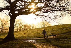 © Licensed to London News Pictures. 28/01/2015. London, UK. A woman walks her dog on Hampstead Heath during a warm orange sunrise and cold weather this morning. Photo credit : Vickie Flores/LNP