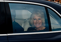 The Duchess of Cornwall attends the Queen's Christmas lunch. Buckingham Palace, London, United Kingdom. Wednesday, 18th December 2013. Picture by i-Images