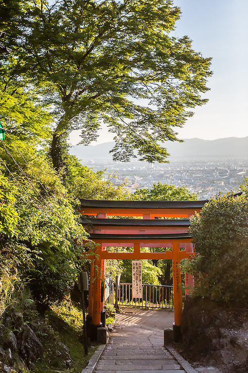 At some point in the path at Fushimi Inari, a tree and a red tori gte overlook the city of Kyoto below.