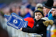A young Brighton & Hove Albion fan during the The FA Cup match between Brighton and Hove Albion and Sheffield Wednesday at the American Express Community Stadium, Brighton and Hove, England on 4 January 2020.