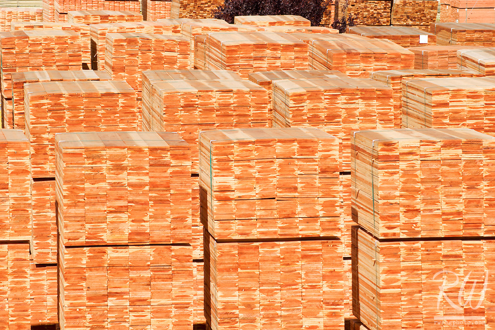 Stacks of Timber at Pacific Lumber Company Mill (PALCO), Scotia, California