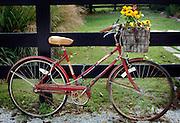 Bike and Fence